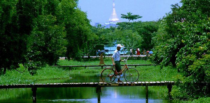 運河と自転車(電線消し済み)
